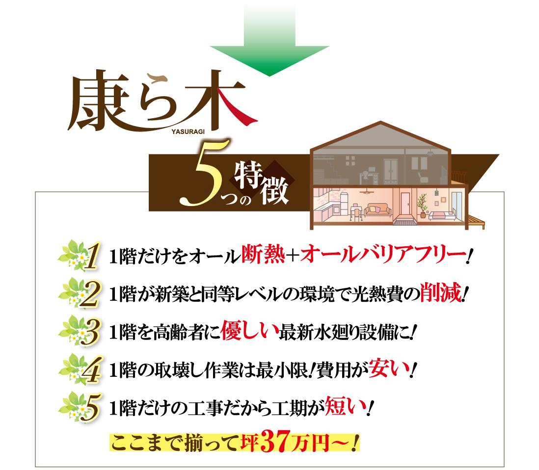 バリアフリー、光熱費削減、1階を高齢者に優しい水廻り、費用が安い、工期が短い、坪37万円から